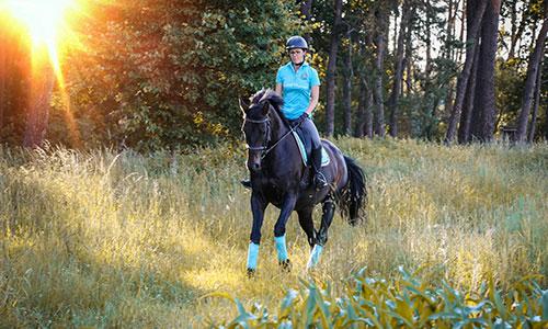 NW-Fotodesign-Tierfotografie-Pferdefotos